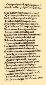 Pucić, Elegiarum libellus